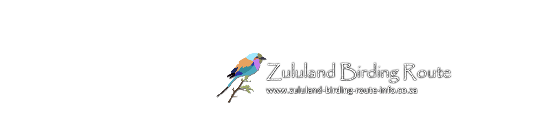 Camping in Zululand Bird Route