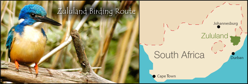 Maps of Zululand Bird Route Information Directory